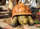 Фигура «Черепаха», купить в Крыму и Севастополе